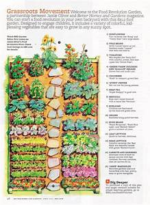 Kitchen Garden Designs  Plans   Layouts 2020
