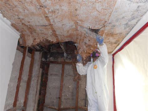 asbestos removal cve corp