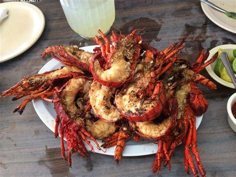 puerto nuevo lobster dinner baja mexico discover baja