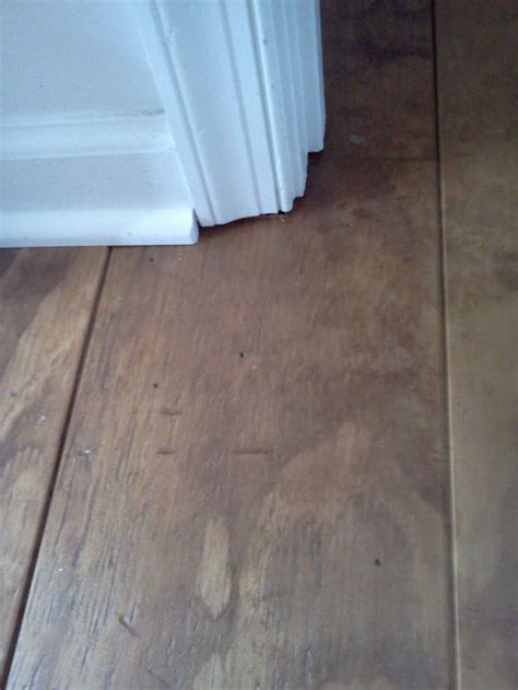 flooring plywood the 25 best ideas about inexpensive flooring on pinterest cheap plywood cheap wood flooring