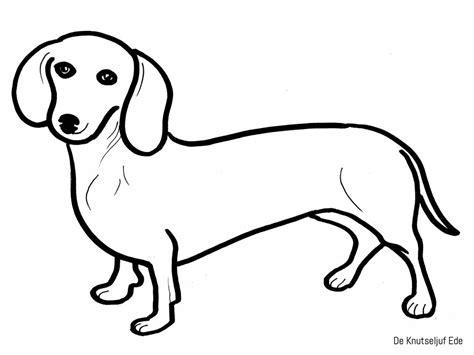 Domme Hond Kleurplaat by Kleurplaten Honden Kleurplaten Honden Puppies
