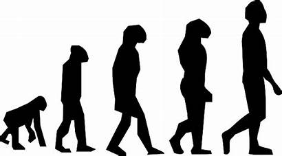 Evolution Darwin Charles Walking Graphic Vector