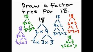 Factor Trees - YouTube  Factor