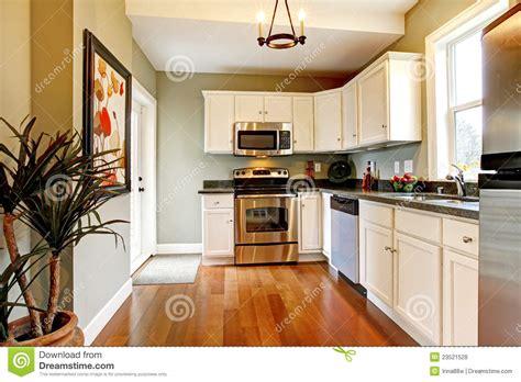 cucina e verde elegante con il pavimento della