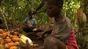 Nestle 'to act over child labour in cocoa industry' - BBC News
