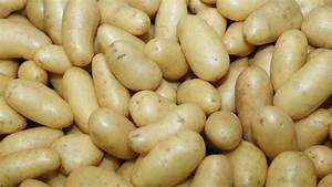 Kartoffeln In Der Mikrowelle Zubereiten : kartoffeln allrounder in der k che ~ Orissabook.com Haus und Dekorationen