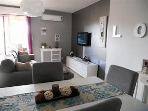 Deco Design Salon : deco salon gris et blanc collection avec impressionnant ~ Farleysfitness.com Idées de Décoration
