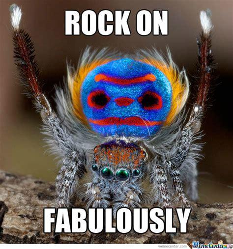 Peacock Meme - peacock spider by boromirinmordor meme center