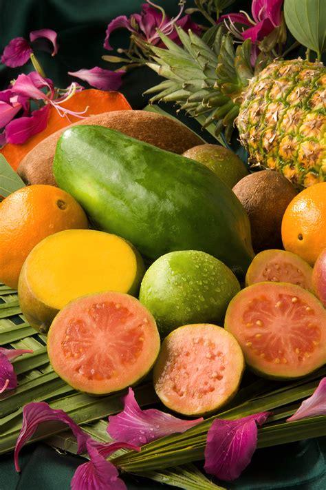 Südfrüchte  Die Garteninfothek