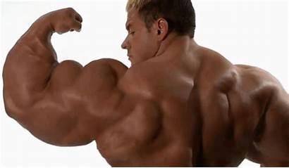Muscle Transformation Deviantart Huge Muscles Jeff Belly