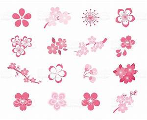 Blossom clipart sakura flower - Pencil and in color ...