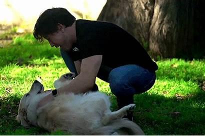 Fastest Trick Dog Teach Dogging Reblog