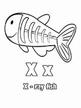 Coloring Pages Ray Letter Preschool Rays Crafts Sheets Worksheets Alphabet Activity sketch template