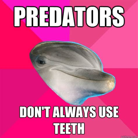 Dolphin Memes - dolphin meme pictures to pin on pinterest thepinsta