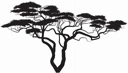 Silhouette Tree Clip Clipart Exotic Plant Silhouettes