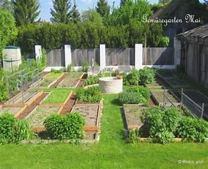 Gemüsegarten Anlegen Beispiele : gemusegarten anlegen pflanzplan ~ Lizthompson.info Haus und Dekorationen