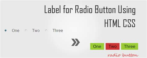 label for radio button using html css 推酷