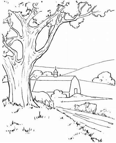 Coloring Scenery Barn Pages Farm Nature Around