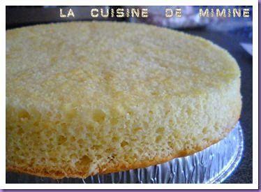 cuisine rapide genoise génoise express en 30 min rapide et pratique à lire