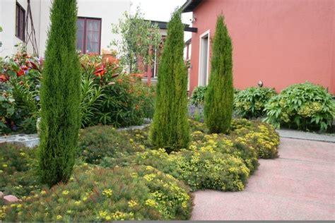 tuscan garden plants for a waterwise landscape consider mediterranean garden design csmonitor com
