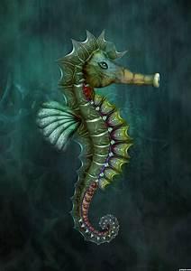 Seahorse on Pinterest | Seahorses, Horse Art and Horses