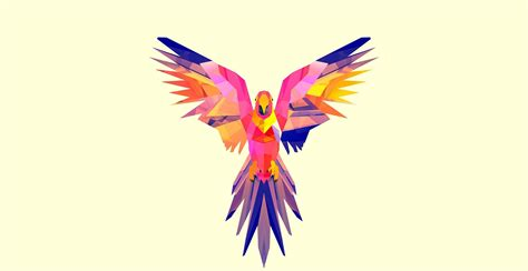 maverick  parrot wallpaper birds wallpapers
