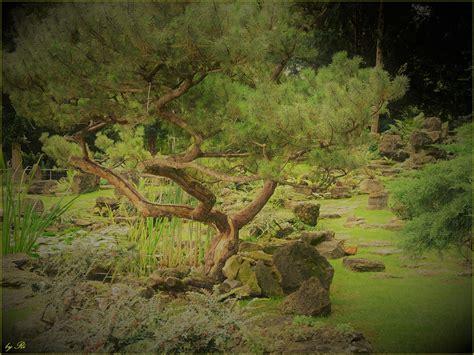 Japanischer Garten Schönbrunn by Moments And Thoughts Der Mystische Japanische Garten In
