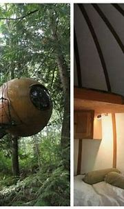 Free Spirit Sphere treehouse | Awesome bedrooms, Cool tree ...