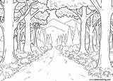 Coloring Pages Jungle River Printable Adults sketch template