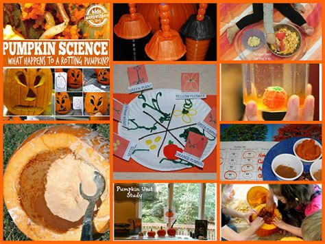 the preschool toolbox educational learning and play 890 | FALL MAIN SCIENCE COLLAGE