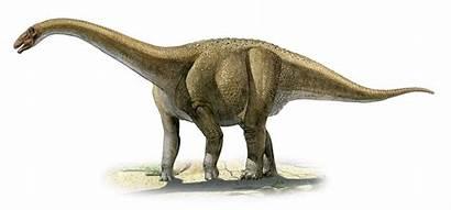 4k Spinosaurus Wallpaperaccess Dinosaur Wallpapers Hq Animal