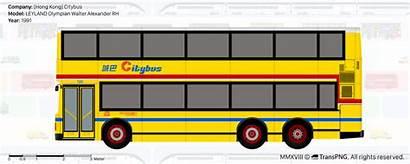 Transpng Citybus Bas Views