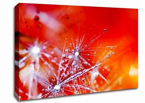 Fairy, Lights, Abstract, Canvas, Stretched, Canvas