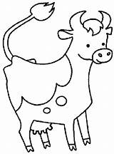 Cow Coloring Coloringpages1001 sketch template