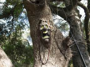 photos all the best tree faces talking trees for props times guide to