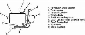 2004 3800 Series Vacuum Hose Diagram