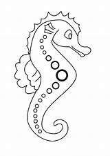 Seahorse Coloring Horse Sea sketch template