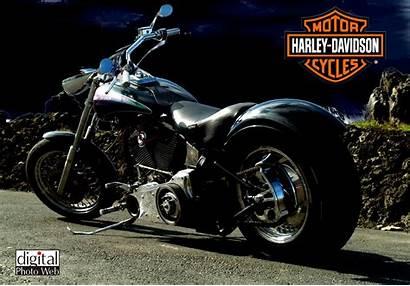 Harley Davidson Chopper Wallpup
