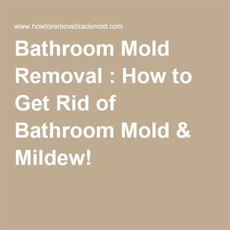 removing bathroom mold     outdoors mold