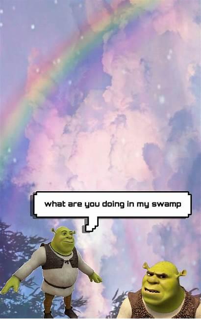 Meme Shrek Aesthetic Iphone Wallpapers Memes Shrekmemes
