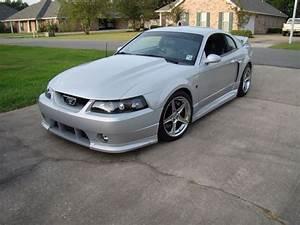Image result for 99-04 mustang cobra r hood   Mustang cobra, Mustang, Roush mustang
