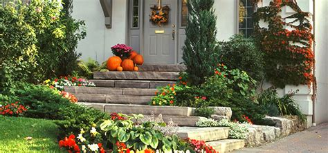 Fall Is Prime Time For Planting  Homestead Gardens