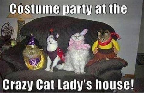 Halloween Party Meme - costume party cat meme cat planet cat planet
