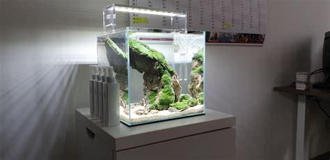 Cube Aquarium Aquascape by Aquascaping Aquascape Ancientstone Aquarium Akwarium