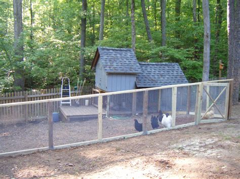 fenced in backyard new fenced in chicken yard pics