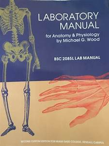 Laboratory Manual For Anatomy And Physiology  Second