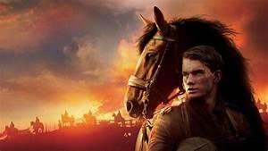 Cheval De Guerre Streaming Vf : regarder film cheval de guerre en streaming hd 1080p 720p dadyflix ~ Maxctalentgroup.com Avis de Voitures