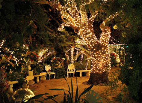 in summer trees the secret garden mill inn half moon bay californi Lights