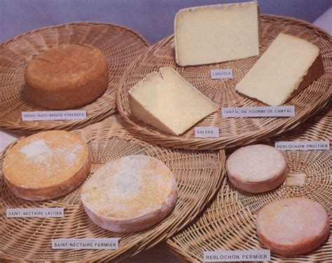fromage a pate pressee non cuite recettes les fromages 224 pate press 233 e non cuite