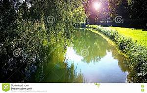 Bavarian, Landscape, Quiet, Pond, With, Tree, Reflections, In, Back, Light, Stock, Photo